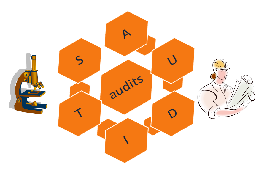 Audit, Lean Management, PDCA